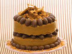 Chocolate, caramel & honeycomb cake