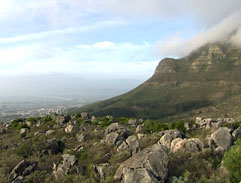 Top Billing dines for peace on Table Mountain