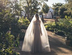 Top Billing invites you to a dream Babylonstoren wedding