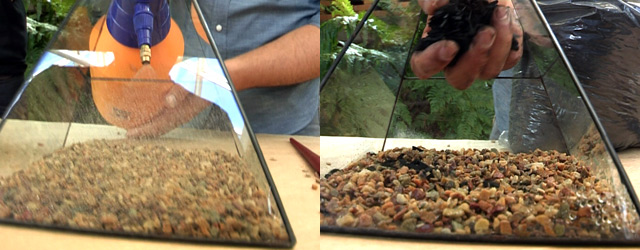 DIY make your own Terrarium