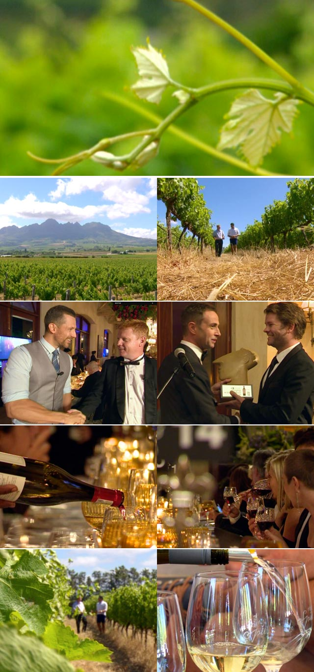 Top Billing meets the winemaker of the year Jacques Erasmus