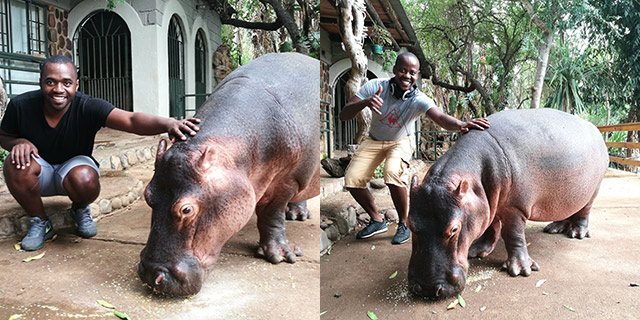 Top Billing explores Limpopo and meets Jessica the hippo 3